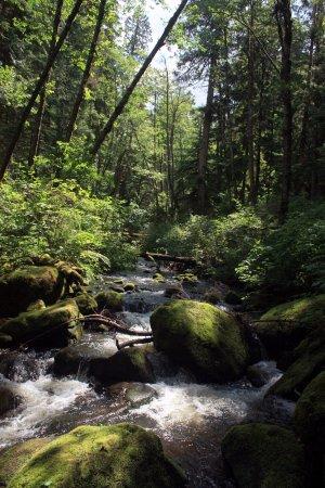 Mission, Canada: Near the falls