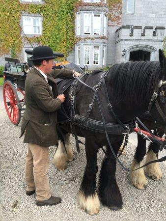 Newmarket-on-Fergus, أيرلندا: Carriage ride