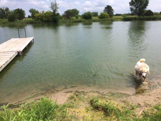 Pierce, NE : Sandy beach and boat dock