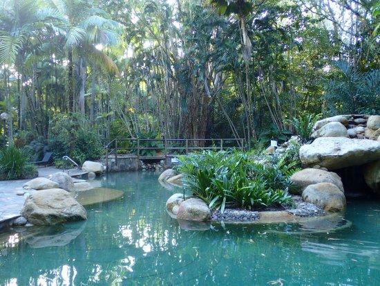Kewarra Beach, Australie : one of the garden pools