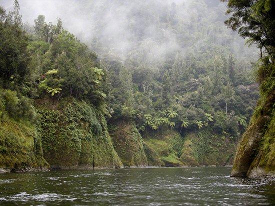วางกานูอี, นิวซีแลนด์: Whanganui Upper River
