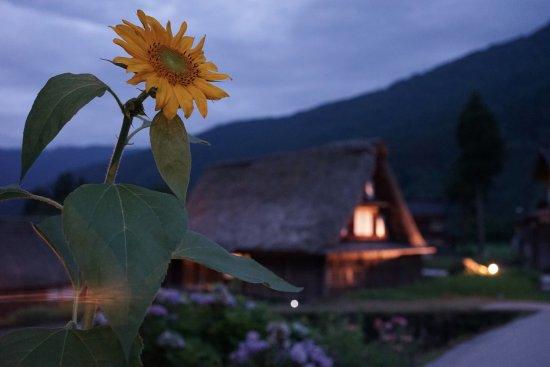 南砺市, 富山県, 夜涼みライトアップ