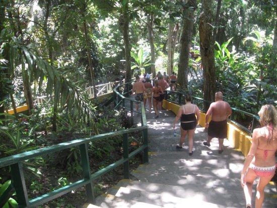 Dunn's River Shuttle : Walk Down From The Top of Dunn's River
