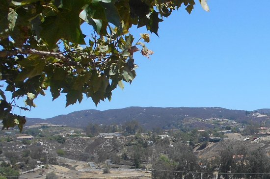 Temecula, CA: Beautiful scenery...