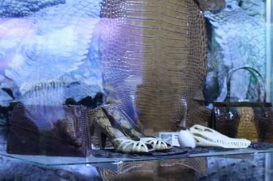 ดาเวา, ฟิลิปปินส์: leather shoes- crocodile