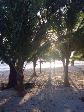 Foui, Tonga: photo0.jpg