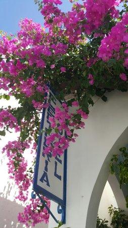 Hotel Eleftheria Parikia : IMG-20160709-WA0009_large.jpg
