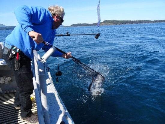 Kodiak, AK: Fish Caught