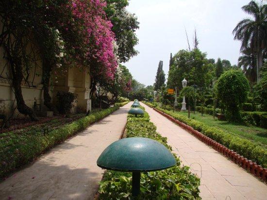 Garden Of The Maidens (Sahelion Ki Bari): Garden Sahelion Ki Bari