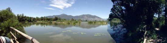 Provaglio d'Iseo, Italia: Panorama