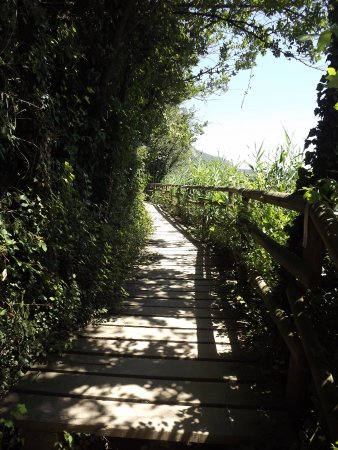 Provaglio d'Iseo, Italia: Passerella