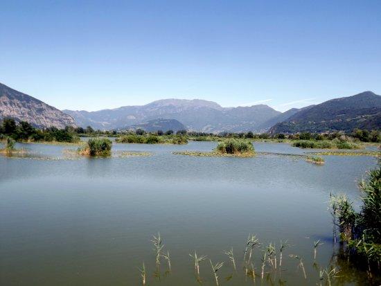 Провальо-д'Изео, Италия: Torbiera