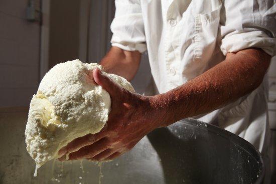 Giano dell'Umbria, إيطاليا: così facciamo il Pecorino!