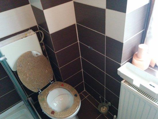 Hanul Cu Noroc: Broken WC Water Tank