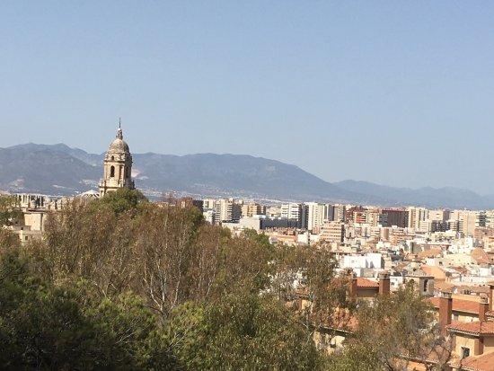 Segway Malaga Tours: photo1.jpg