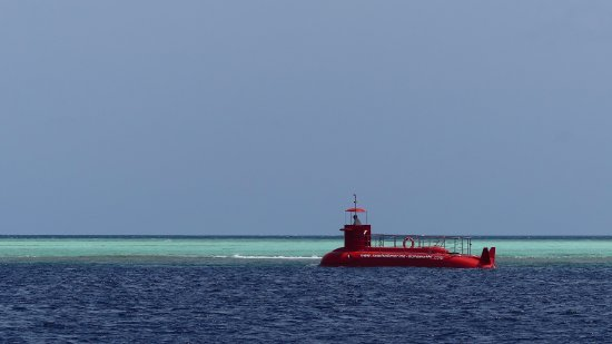 Kuramathi: will try this next time! hassle free snorkeling