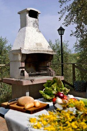 Barberino Val d'Elsa, Italia: Barbecue