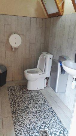 Saint-Leon-sur-Vezere, Francia: Toilettes