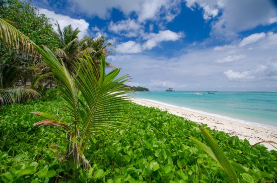 Anse Royale, Seychelles: beach in front of restaurant