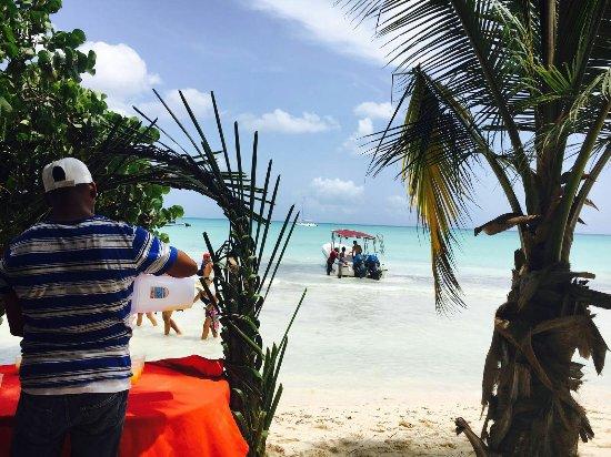 Bayahibe, Dominican Republic: IMG-20160717-WA0134_large.jpg