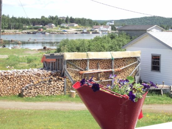 Trinity, Canadá: The view from the patio at Washed Ashore Antiques