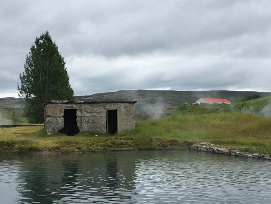 Flúdir, Island: Super mellow, local greenhouses surrounding using geothermal heat of hot springs - picnic area t