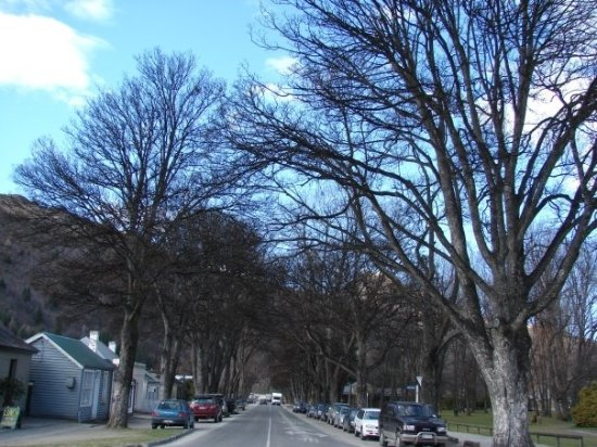 Street in Arrowtown off the main street