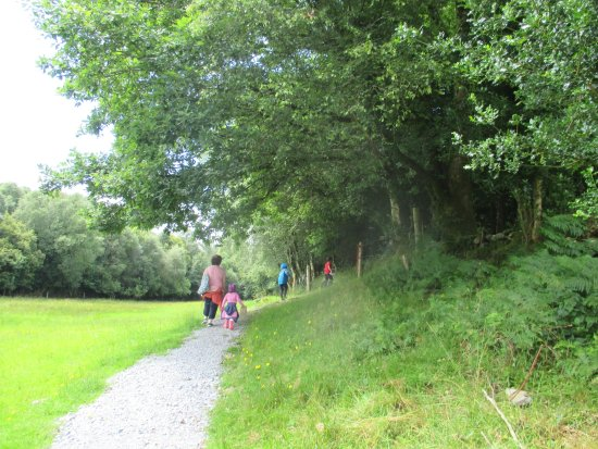 Loughrea, Irland: the path to the enchanted forest