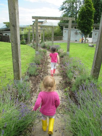 Loughrea, Irland: beautiful lavender walkway to gazebo