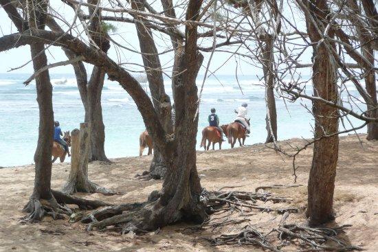 Bath Beach 3