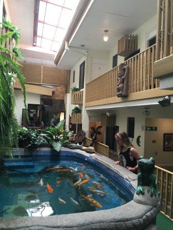 Adventure Inn: photo0.jpg