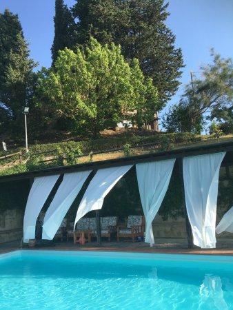 Il Monchino: L'angolo relax della piscina