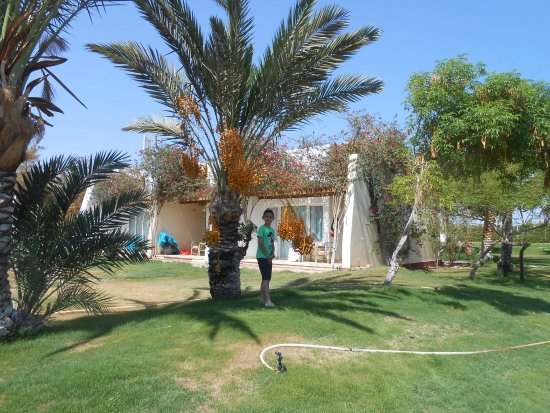 Ibis Styles Dahab Lagoon: photo0.jpg