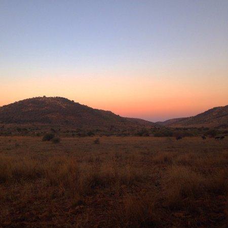Pilanesberg National Park: pink sky