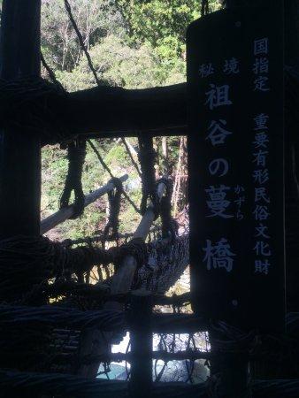Iya Kazura Bridge: 渡り切ったところ