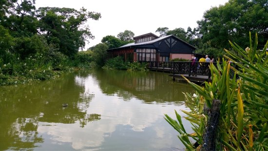 Taoyuan, Taiwan: 八德埤塘自然生態公園