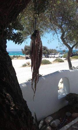 Kastraki, Grækenland: 20160718_142609_large.jpg