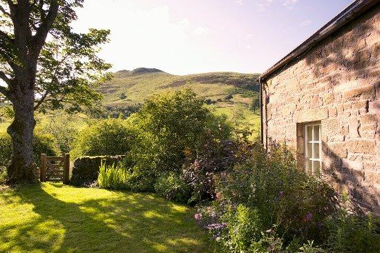 Eastside Cottages: Steading Cottage garden