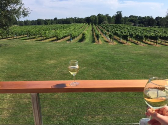 Image result for clermont vineyards
