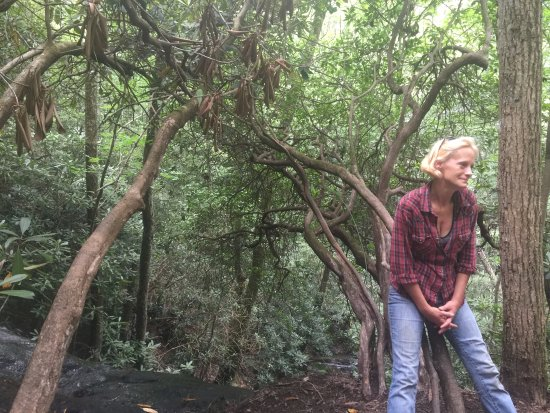 Hayesville, Carolina do Norte: Our guide. She tells great stories and is super helpful.