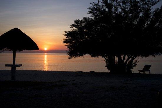 Balicasag Island-bild