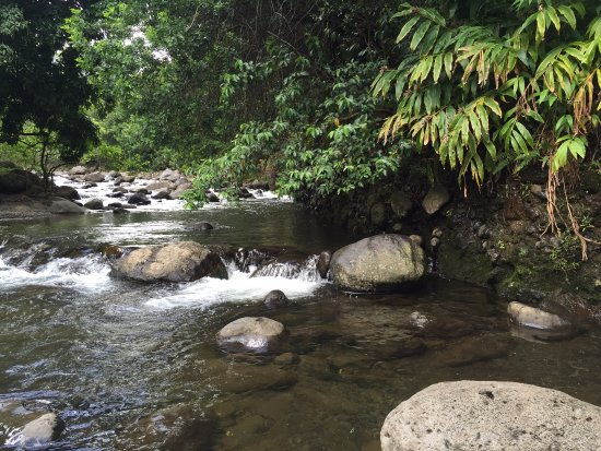 Iao Valley State Monument: Just Beautiful
