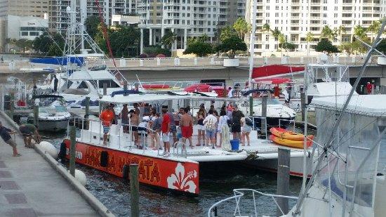 Visit Palm Beach The Hakuna Matata Catamaran