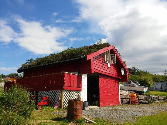 Tornes Fjordcamping: 20160704_113856_large.jpg