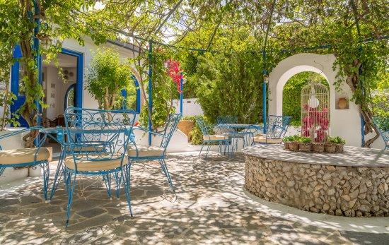 Nathalie Hotel: Courtyard garden