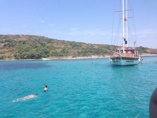 20160701_084158_large.jpg - Ozzlife Boat, Gümbet Resmi ...
