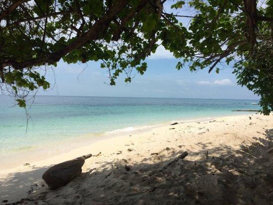 Pulau Selingan, ماليزيا: photo4.jpg