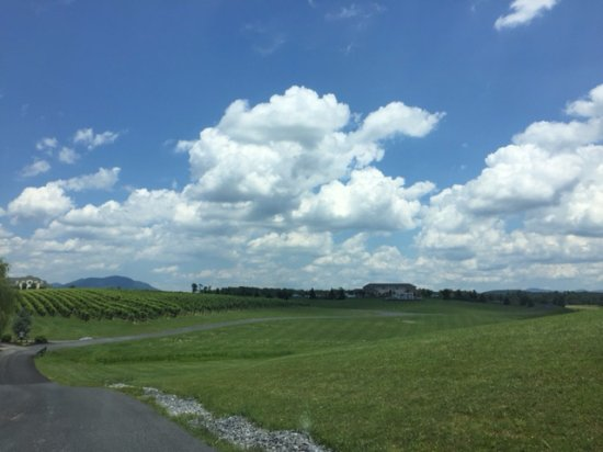 Mount Crawford, VA: Coming into the winery