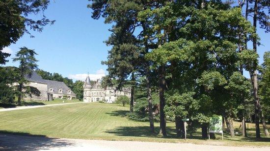 Chateau de la Bourdaisiere: 20160716_162354_large.jpg