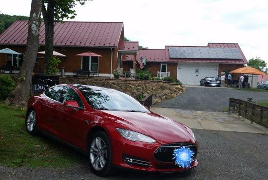 Madison, VA: Tesla's from around the DMV flocked to taste Ducard's offerings